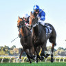 Oceanex gallops into Cup picture after gaining Ramsden's golden ticket