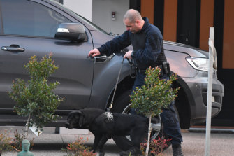 A police officer and sniffer dog inspect a car at Mr Christopher's Keilor Lodge home on Friday morning.