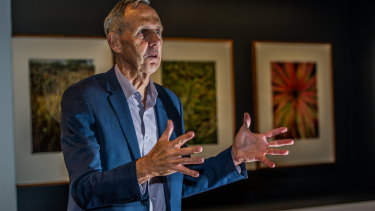 Former Greens leader Bob Brown considered talks on forming a breakaway Greens party but ultimately decided they should stay united.