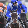 Ultimate accolade: Winx named best horse in the world