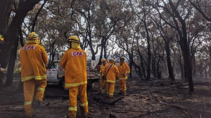 'Anything that starts will be difficult to control': Total fire ban for state's north