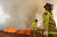 Queensland firefighters at work on a backburn (file image).