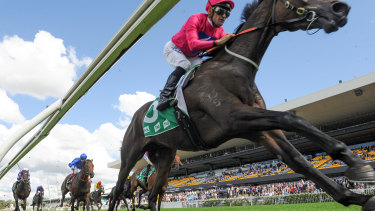 Super effort: Angel Of Truth provided a magical highlight for the Superhorse Syndicate in the Australian Derby.