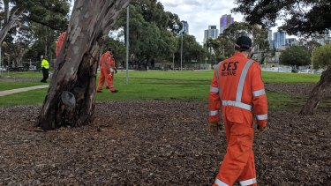 SES volunteers look for evidence in South Melbourne.