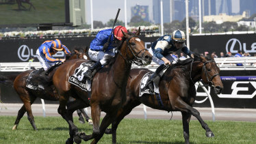 Europe or Australia: Cross Counter wins the Melbourne Cup