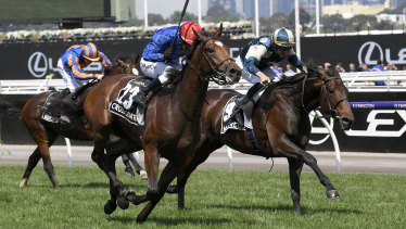 Biter: Marmelo (right) finishes second to Cross Counter in the Melbourne Cup.