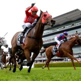 Kerrin McEvoy punches the air as Redzel wins the Everest
