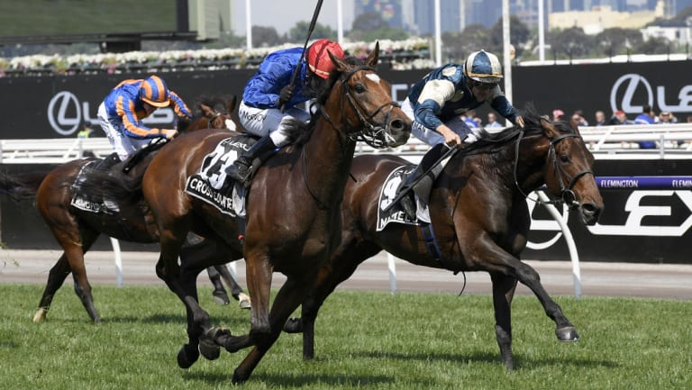 Marmelo (right) finishes second to Cross Counter in this year's Melbourne Cup.