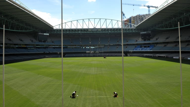 The Etihad Stadium playing surface.
