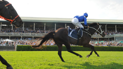 Keeping Winx at home was central to I Am Invincible decision