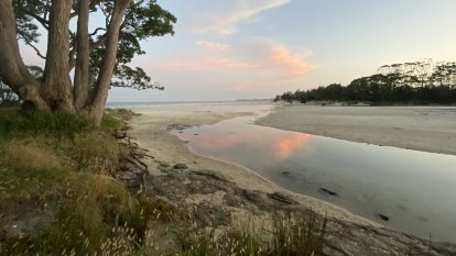 Travellers flood to NSW South Coast as COVID lurks