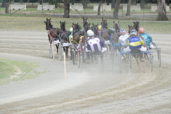Harness racing officials are hoping that COVID-19 that isn't out of control in the industry