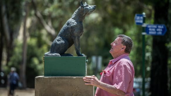 Old dog, new tricks: Gundagai's bid to save a national landmark