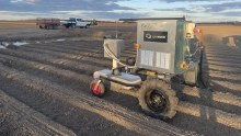 The machine is towed behind a tractor, going row by row, but it is envisaged the technology could be solar-powered and mounted on an autonomous vehicle.