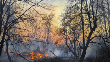 A view of a forest fire burning in the Chernobyl nuclear exclusion zone.