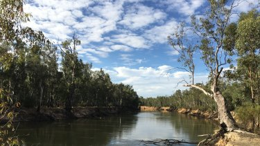 The Murray River near its juncture with the Goulburn River earlier this year.