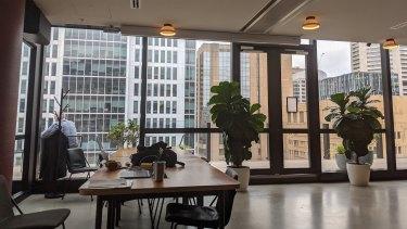 WeWork's hub at 333 George Street in Sydney is spread over five floors.