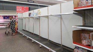 Empty toilet paper shelves at New Farm Coles on Monday.