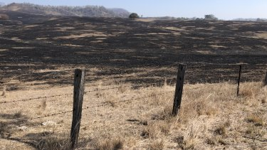 A fire in the Scenic Rim town of Tarome swept through and burnt grassland over the weekend.