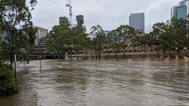 On February 10, the inundated former David Jones car park on which the new Powerhouse Museum will stand.