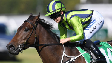 Old favourite: Rachel King will ride Live And Free in the Lord Mayors Cup at Rosehill on Saturday.
