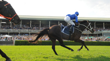 Local hero: Winx will remain in Australia after connections settled on I Am Invincible as her first stud partner.
