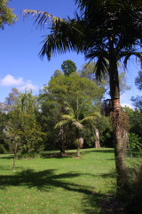 The Maranoa Gardens in Balwyn.