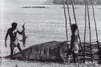 Fish traps in Arnhem Land, 1952.