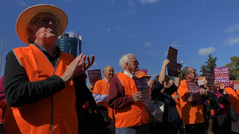 Euthanasia supporters welcome the parliamentary committee report recommending its introduction.