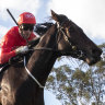 Snowden hopes patience pays off with a double Guineas boom