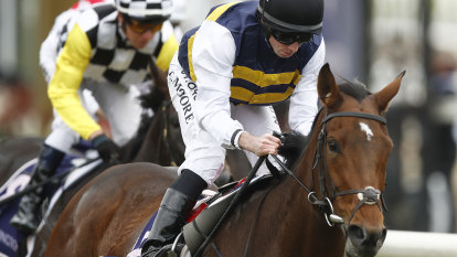 Terry Henderson targets Melbourne Cup with Irish stayers