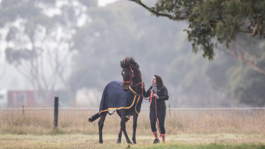 Ms McIntyre helps former racehorses learn to live a calmer life.