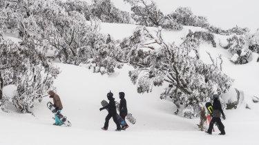 "COVID-19 has had a ""shockingly cruel"" impact on the Australian ski industry, but visitors still enjoyed visiting snow resorts."