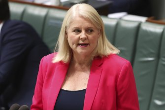Home Affairs Minister Karen Andrews has spoken about New Zealand's offer to take asylum-seekers.