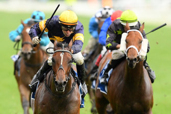 Dual group 1 winner Tofane was another inexplicable omission.