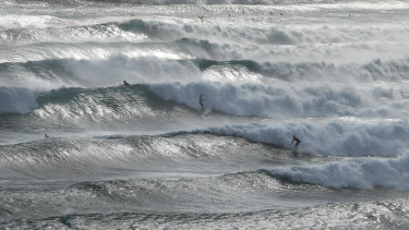 Swell from Cyclone Oma on the Gold Coast.