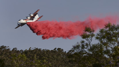 National aerial firefighting fleet among bushfire royal commission's 24 recommendations