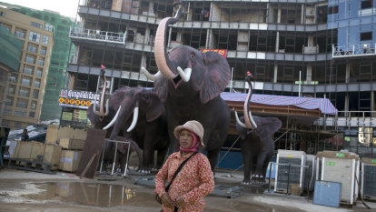 Development bank opts for climate-change investment over 'white elephants'
