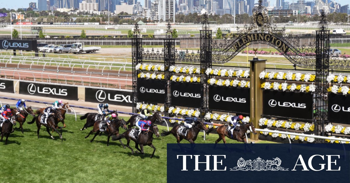 'Not a single horse booked' to journey from abroad to Melbourne for spring carnival