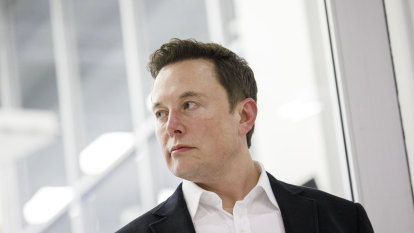 'Dear Mr Unicorn': Musk mocks hedge fund for betting against Tesla