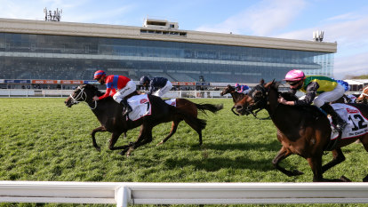 Verry Elleegant gets half kilo Melbourne Cup penalty