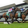 Mugatoo still a safe bet despite danger race at Randwick, says Dolan