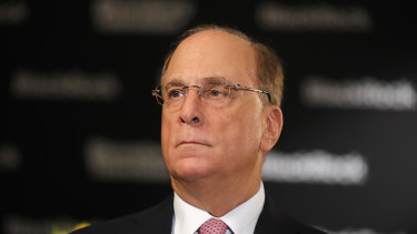 BlackRock founder Larry Fink has sent a powerful signal to markets - but how much can his own company's funds apply the new climate change mantra?