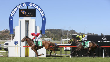An eight-race card has been set down for Kembla Grange on Thursday.