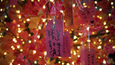 Messages of support for stranded Chinese students are displayed on a solidarity tree at the University of Sydney.