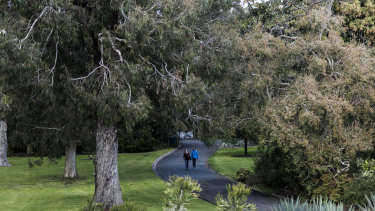 People strolling in the gardens for free