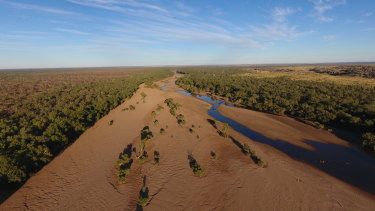 The Fitzroy River in WA's Kimberley region.