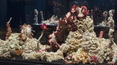 Bleached Reef at the Museum of Arts and Design, New York.