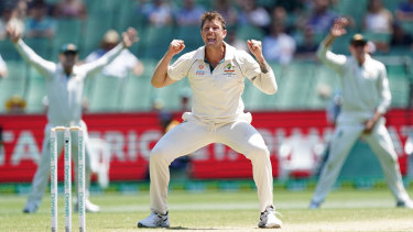 Pace ace: James Pattinson celebrates after dismissing New Zealand captain Kane Williamson on day four at the MCG.