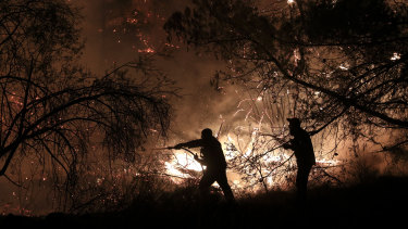 Firemen try to put out a forest fire in Makrimalli village on the island of Evia.